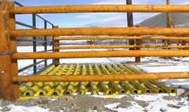 Farm Duty Cattle Guards