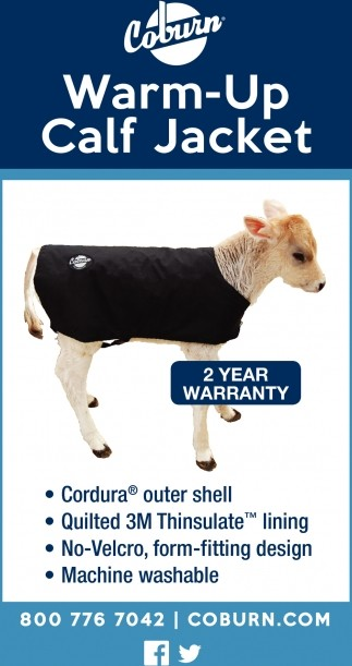 Small Calf Warm-Up Jacket, Jersey size, silver - CS25