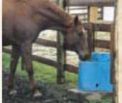 Performance One Large Animal Drinker-Heated