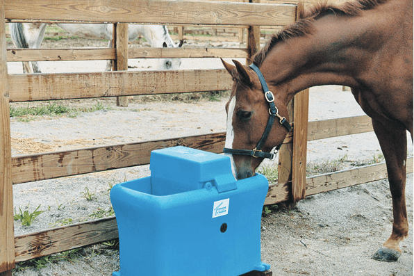 12 Gallon Non-Heated Waterer w/ Access Door