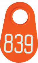 Bock's® Identi Company Pear Tag - NUMBERED in WHITE