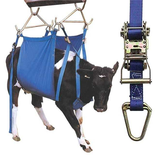 Daisy Cow Lifter-Heavy Duty