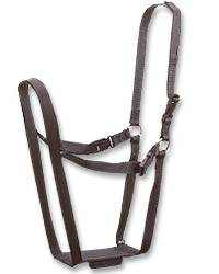 Ewe Marking Harness
